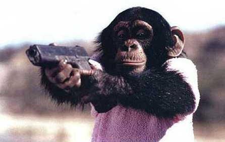 chimp_gun