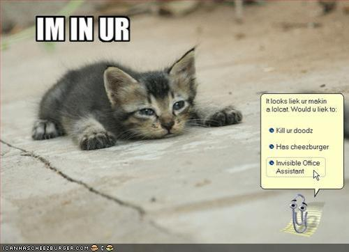 funny-pictures-lolcat-office-assistant1