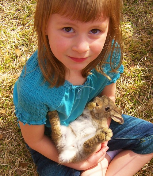 baby_bunny_up_close_3108_web