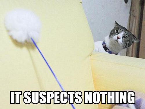 it-suspects-nothing
