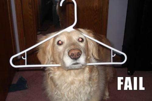 fail-dog-26-600x400