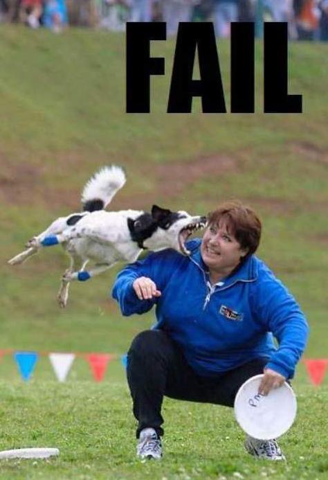 Fail_Dog